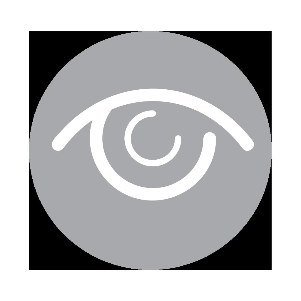 Eyesight to insight courses vital links eyesight to insight buycottarizona